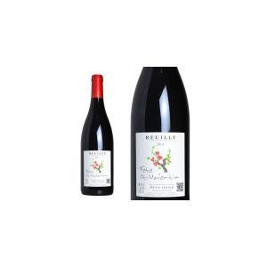 ルイイ・フェット サン・ヴァランタン ルージュ 2014年 ドメーヌ・ド・ルイイ 750ml (ロワール 赤ワイン)|wineuki