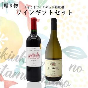 お歳暮の贈り物に うきうきワインのギフトセット 赤ワイン&ス...