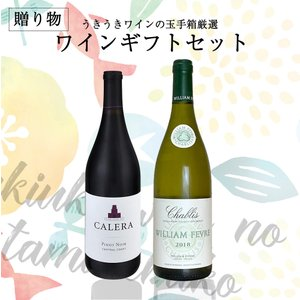 お歳暮の贈り物に うきうきワインのギフトセット 赤ワイン&白...