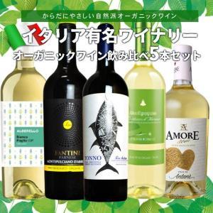 ワインセット オーガニックワインセット うきうきワインの玉手...