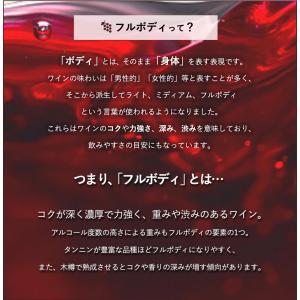 うきうき厳選!驚異のフルボディ極上赤ワイン6本セット (送料無料ワインセット) wineuki 02
