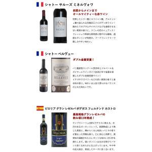うきうき厳選!驚異のフルボディ極上赤ワイン6本セット (送料無料ワインセット) wineuki 05