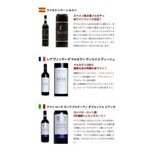 うきうき厳選!驚異のフルボディ極上赤ワイン6本セット (送料無料ワインセット) wineuki 06
