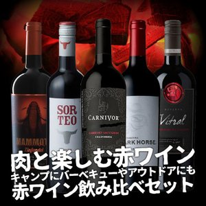 送料無料 赤ワインセット 肉と楽しむ赤ワイン! キャンプにバーベキューやアウトドアにも! 赤ワイン飲...