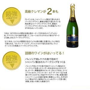 最強の泡 うきうき完全赤字の高級辛口スパークリングワインセット シャンパン方式のクレマンも入った6本セットが送料無料!|wineuki|03