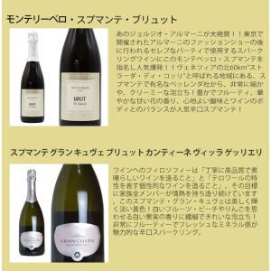 最強の泡 うきうき完全赤字の高級辛口スパークリングワインセット シャンパン方式のクレマンも入った6本セットが送料無料!|wineuki|05