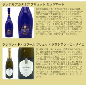最強の泡 うきうき完全赤字の高級辛口スパークリングワインセット シャンパン方式のクレマンも入った6本セットが送料無料!|wineuki|06
