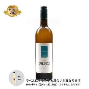 日本ワイン カーブドッチ(新潟)/ミリュ ブラン (白) MINIVINサイズ 100ml|wineworksaoyama
