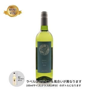 日本ワイン 仙台秋保醸造所(宮城)/甲州 シュール・リー (白) MINIVINサイズ 100ml|wineworksaoyama