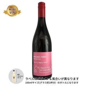 日本ワイン はすみふぁーむ(長野)/コンコードドライ(赤) MINIVINサイズ 100ml|wineworksaoyama