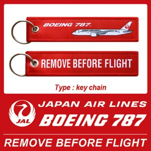 日本航空 Japan Air Airlines  JAL LOGO Boeing 787 REMOV...