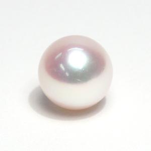 真珠直径8.3mmアコヤ真珠1珠ルース片穴あき 選べる配送方法370円対応商品 wizem