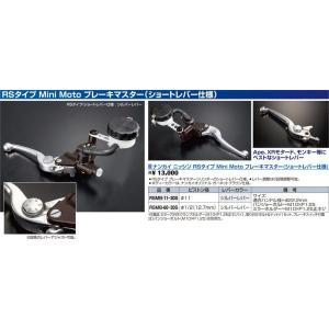 ナンカイ ニッシン RSタイプ Mini Moto ブレーキマスター(ショートレバー仕様) RSMB-11-30S|wjs