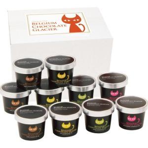 お中元 イーペルの猫祭り ベルギーチョコレートグラシエ(アイス職人) (10個) wnet
