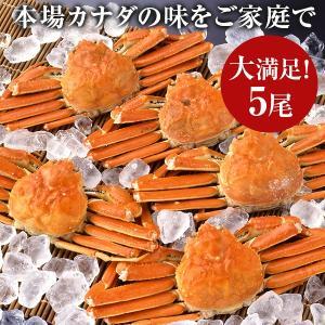 プレゼント ギフト ずわいがに 姿(5尾) ボイル ZHB405|wochigochi