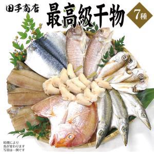 プレゼント ギフト 田手商店 干物セット 7種|wochigochi