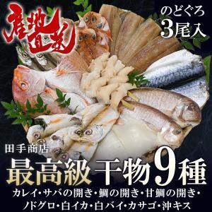 プレゼント ギフト 田手商店 干物セット 9種 wochigochi