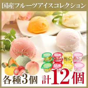 プレゼント ギフト アイスクリーム 国産フルーツアイスコレクション 12個詰め合わせ|wochigochi