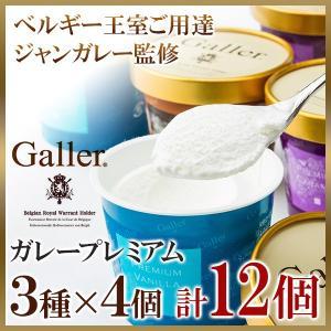 父の日 お中元 御中元 プレゼント ギフト 内祝い アイスクリーム ギフトセット ガレープレミアム 12個詰め合わせ|wochigochi