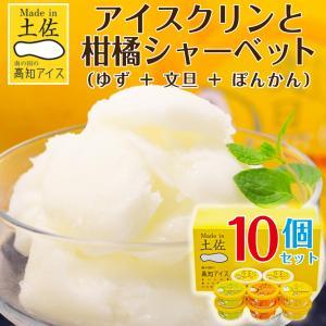 父の日 お中元 御中元 プレゼント ギフト 内祝い アイスクリーム アイスクリンと柑橘シャーベット詰め合わせ|wochigochi