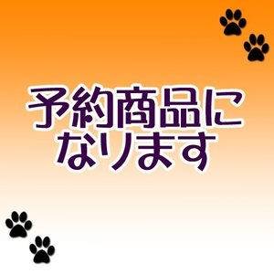 (8月予約)大神&大神伝 ぬーどるストッパープチ弐 全3種(ゆうパック発送のみ)|wolffang