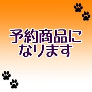 (8月予約)大神&大神伝 ぬーどるストッパープチ弐 アマテラス (ゆうパック発送のみ) wolffang