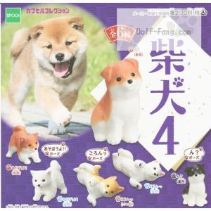 柴犬4 全6種(定形外発送可能 クレカ決済 2セット分まで)|wolffang