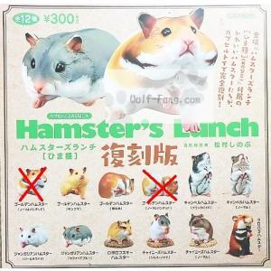 ハムスターズランチ(ひま種) 10種 (定形外発送可能 クレカ決済 1セット分まで)|wolffang