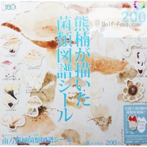 熊楠が描いた菌類図譜シール 全8種(定形外発送可能 クレカ決済 4セットまで)|wolffang
