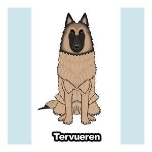 イラスト・カラーステッカー(ベルジアンタービュレーン) ★犬雑貨  犬グッズ  プレゼント  贈り物