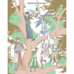 TVアニメ/ソードアート・オンライン II 第6巻<Blu-ray><完全生産限定版>20150325 wondergoo