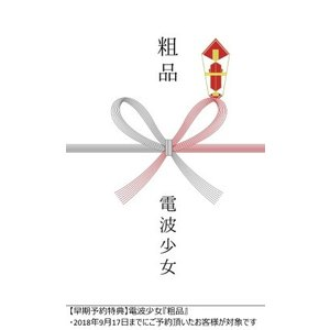 電波少女/電波少女 OWARI NO HAJIMARI 2018.07.01 @TSUTAYA O-EAST<DVD>(完全生産限定盤)20181114 wondergoo 02