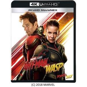 洋画/アントマン&ワスプ 4K UHD MovieNEX<4K Ultra HD Blu-ray+3D Blu-ray+Blu-ray>20190109|wondergoo