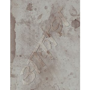 椎名林檎/椎名林檎と彼奴等の居る真空地帯<DVD>20181121 wondergoo