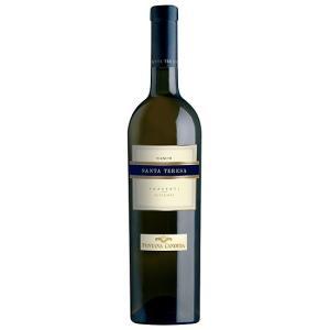 サンタ・テレーザ フラスカーティ・スペリオーレ・セッコ/フォンタナ・カンディダ 750ml (白ワイン)|work-italia