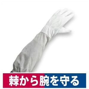 革手袋 肘まで長い革手袋 柚子 薔薇 バラ 棘 収穫作業 剪定作業  S/M/L 中部物産|workway