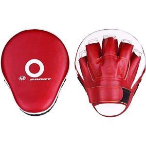 パンチングミット 2個セット ボクシング 空手 格闘技 トレーニング ダイエット