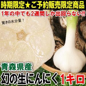 国産にんにくにおいて<味・品質・生産量>と日本一を誇る青森県内においても県内1位の生産量を誇る【十和...