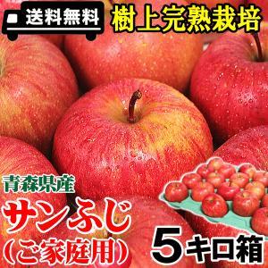 400円クーポンで3580円!青森 りんご サンふじ 5キロ...