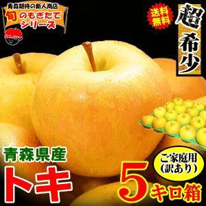 サンふじ 青森 りんご 5kg箱 送料無料  サンふじ ご家庭用訳あり 大小様々
