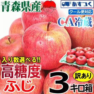 サンふじ 青森 りんご 3kg箱 送料無料  サンふじ ご家庭用訳あり 大小様々