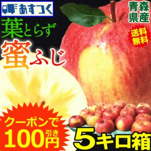 りんご 5kg クール便対応 サンふじ 家庭用 青森県産りんご 訳あり サンふじ 5キロ箱 約11玉〜25玉入り|world-wand