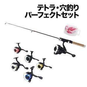 仕舞寸法が短く持ち運びに便利な万能ロッド「テトルドA」とリール「puchi」とブラクリ3個のセットで...