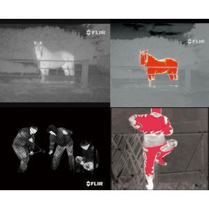 サーマル暗視スコープ フリアースカウトII240 熱を視覚化 ナイトビジョン フリアーシステムズ FLIR 国内正規品|worldkiki|03