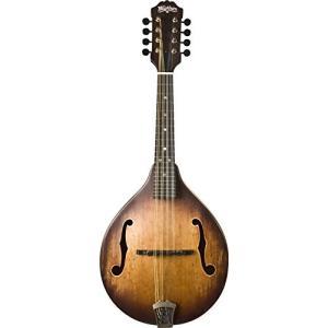 Washburn ワッシュバーン マンドリンシリーズ M106SWK Mandolin, Natural|worldmusic