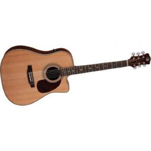 Luna Guitars ルナギター Americana Classic Cutaway エレアコ worldmusic