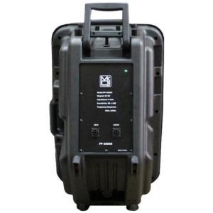 Mr. Dj PP3000S PP3000S 15-Inch 2500W Max Peak Momentary Full Range Loud スピーカー|worldmusic