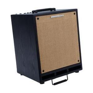 Ibanez T80 80W 2x8 Troubadour Acoustic Combo Amp|worldselect
