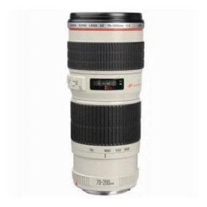 Canon EF 70-200mm f/4L USM Autofocus Telephoto Zoom Lens with Case& Hood - USA