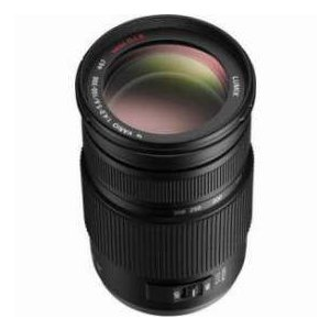 Panasonic Lumix G Vario 100-300mm f/4.0-5.6 MEGA O.I.S. Zoom Lens for Micro Four Thirds Lens Moun